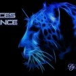 Voices Trance Vol 7